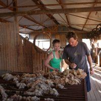 Shearing shed along the Station life trail at the Peron Heritage Precinct