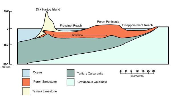 Geological cross-section of Shark Bay